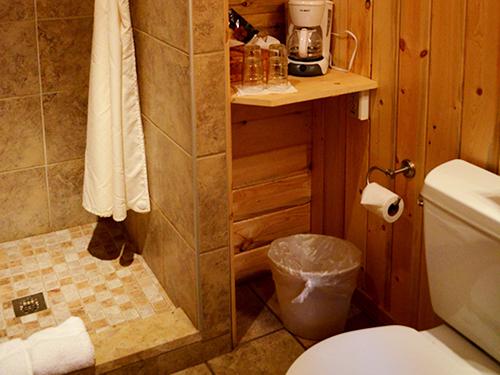 Lower Lodge Shower